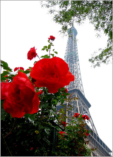 Eiffel rencontre et racine